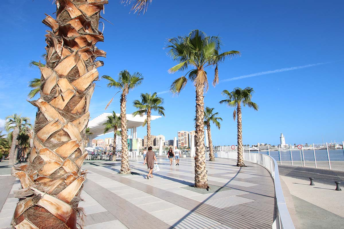 Malaga / Palmeral de las Sorpresas